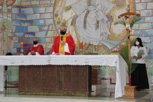 domingo de ramos paróquia de fátima em viçosa